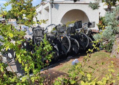 alquiler-de-bicicletas (6)